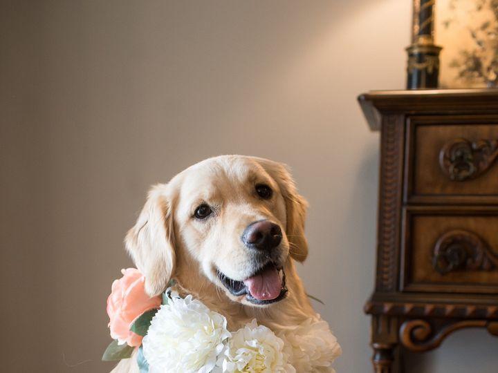 Tmx Hamilton 14 51 689312 1562938294 Saint Louis, MO wedding planner