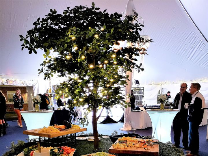 Tmx Lit Up Appetizer Tables With Tree Meliora 2018 2 51 621412 Webster, New York wedding rental