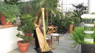 Tmx 1473886247688 Harp2 Haymarket wedding dj