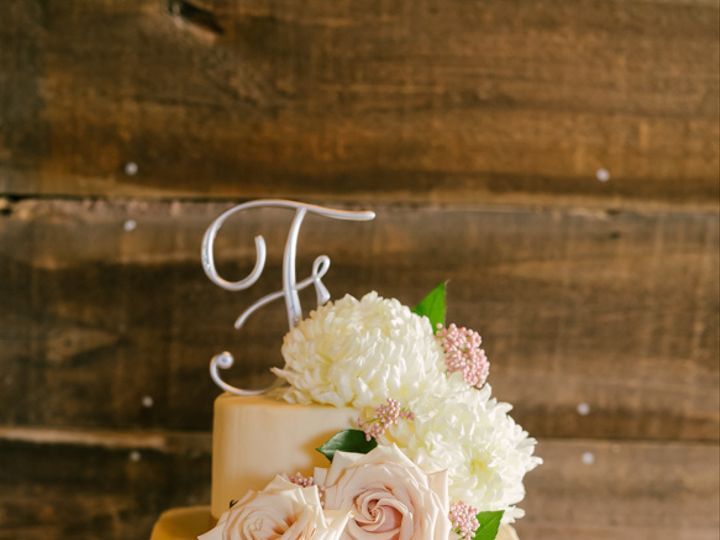Tmx Ali Micah Jeannine Marie Photography 720 51 156412 161653162375684 Bayport, MN wedding cake