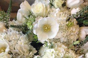 Mitch's Flowers by Monique Chauvin