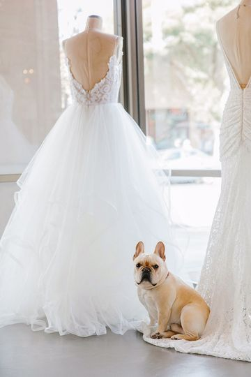 haute bride flagship salon