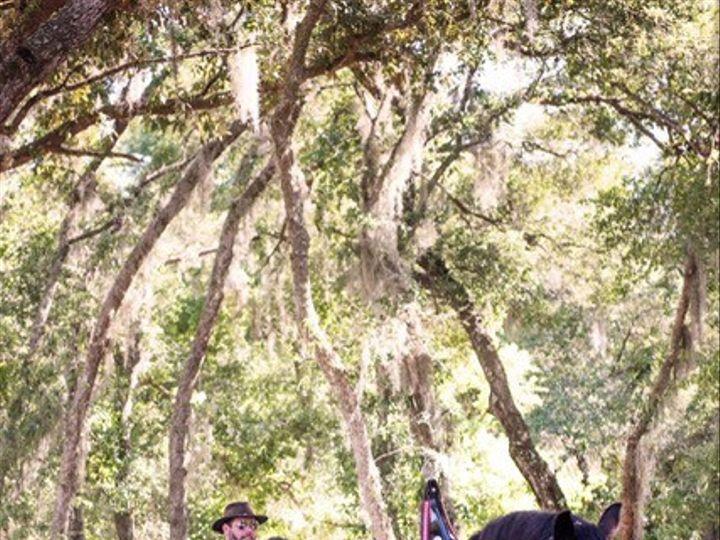 Tmx Clyesdales Horse N Carriage 51 627612 1569250957 Geneva, FL wedding venue