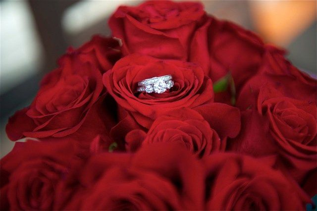 Weddingwebsitephotos29