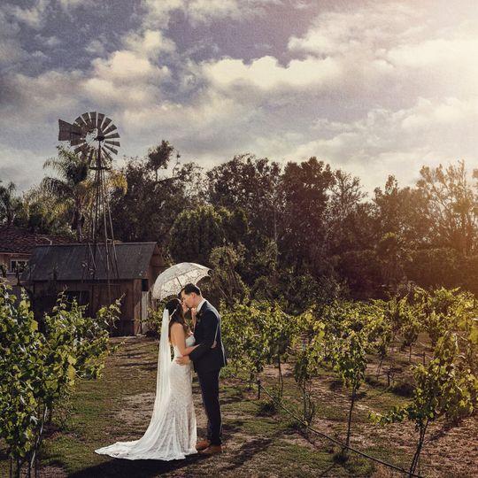 bernardo winery wedding photography 51 581712 1570284090
