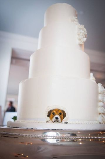 doggiecake