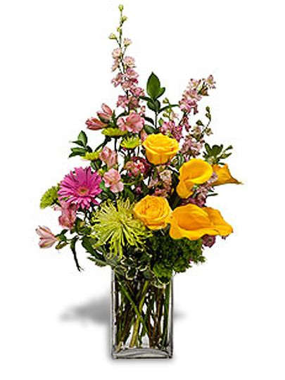 Founded in , Royal Flowers is one of the world's leading suppliers of high-quality flowers with inventory in Quito, Miami and the Netherlands.