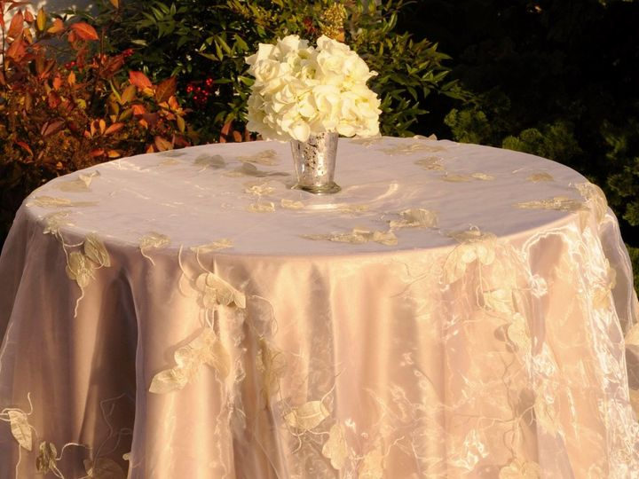 Tmx 1361888607995 Penelope Lancaster wedding rental
