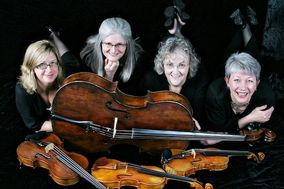 String Quartet Con Brio