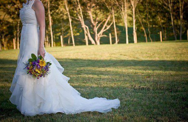 Tmx 1286116048891 Christine3 Hamden wedding planner