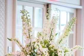 Showcase Floral