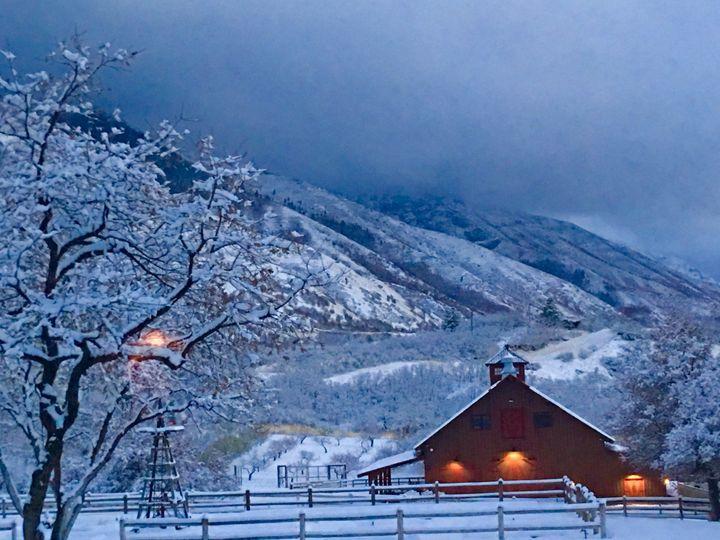 Winter season at Quiet Meadow Farm