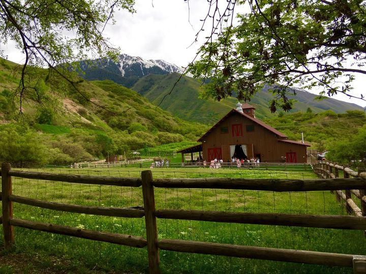 Quiet Meadow Farn