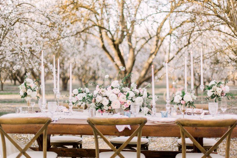romantic orchard elopement 69 51 991912