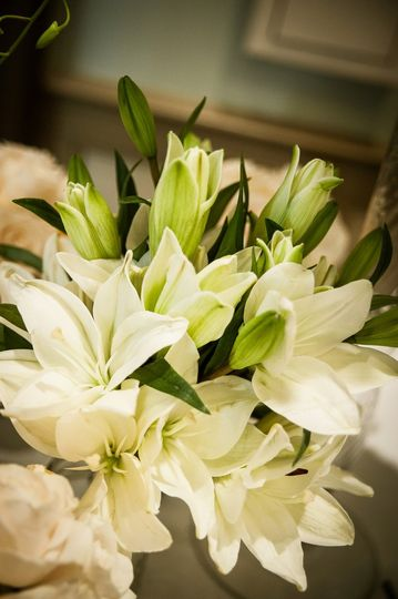 Photography by Aperture Visions Photography, Flowers by Greg Foster. Wedding in Greenville, SC...