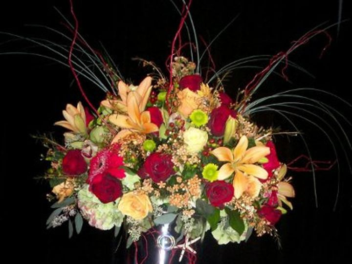 Tmx 1200340103778 Web Wire20 Naples wedding florist