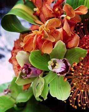 Tmx 1200370123282 Wed Wire11 Naples wedding florist