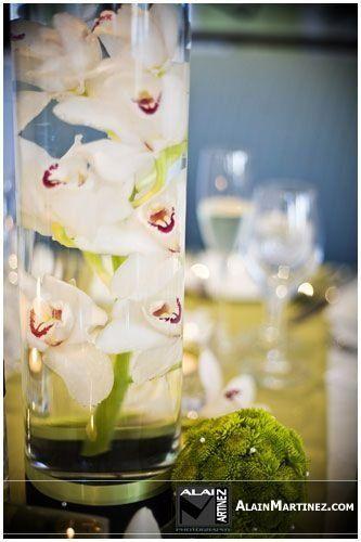 Tmx 1214836455573 Wedwireliz5 Naples wedding florist