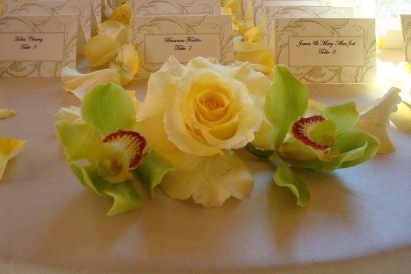 Tmx 1230651569265 Wwpic4 Naples wedding florist