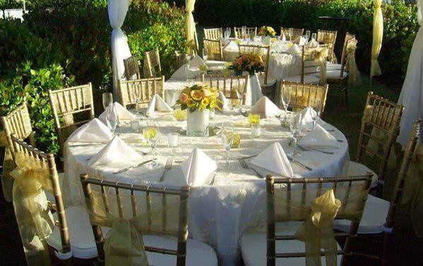 Tmx 1236189656435 WWyellow Naples wedding florist