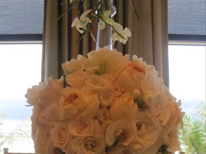 Tmx 1274833220178 Wwjeneddie11 Naples wedding florist