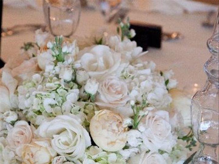 Tmx 1274833240381 Wwjeneddie2 Naples wedding florist