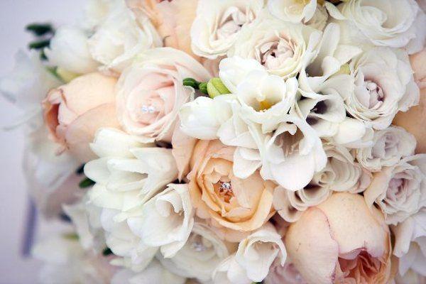 Tmx 1274833241944 Wwjeneddie4 Naples wedding florist