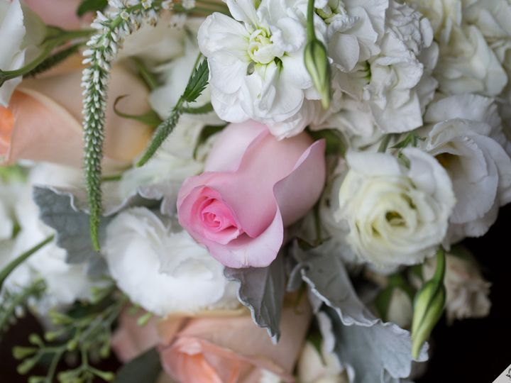 Tmx 1478711965235 M081916js 0011 Raleigh, NC wedding florist