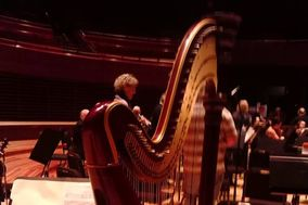 joan steinberg harpist