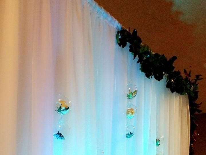 Tmx Terrarium Backdrop Bridal Fair 2019 51 694022 Wichita, KS wedding rental