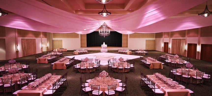 Pink theme reception