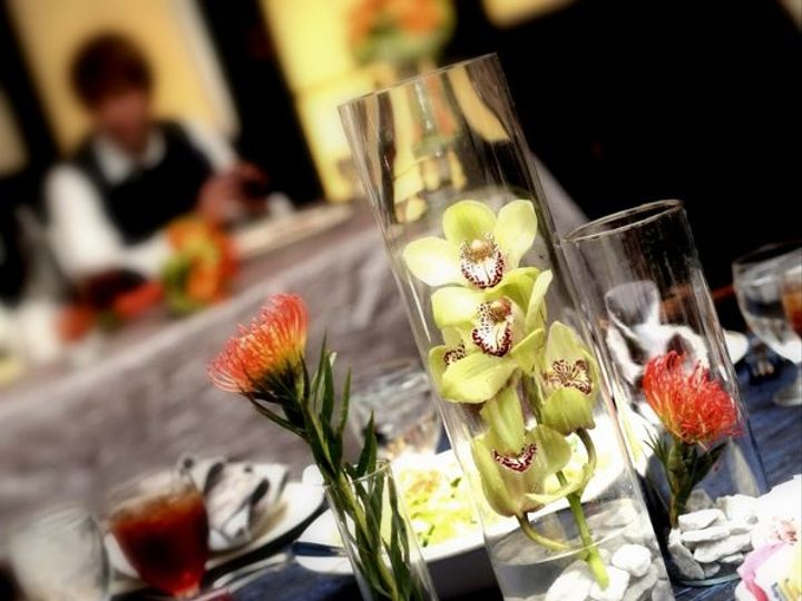 Tmx 1295387774300 IMG49701 Jacksonville, FL wedding rental