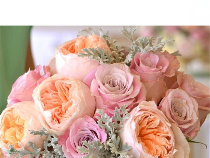 Tmx 1367985625693 139 Jacksonville, FL wedding rental