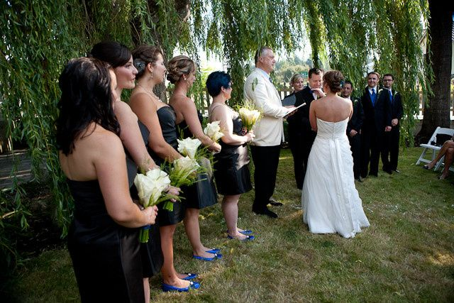 Giant Weeping Willow as Ceremony backdrop