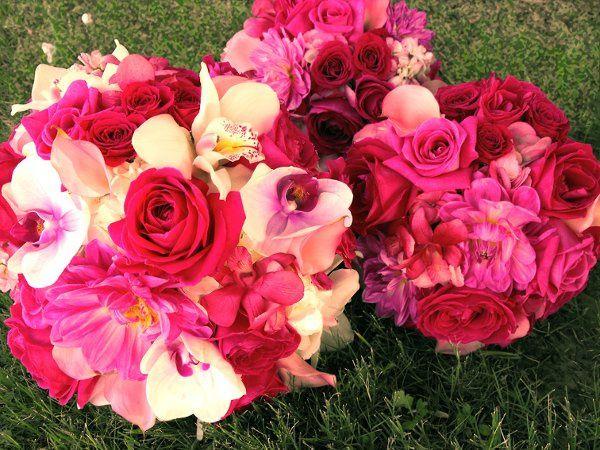 Tmx 1298250463515 Hotpinkandwhitebokays Tulsa wedding florist