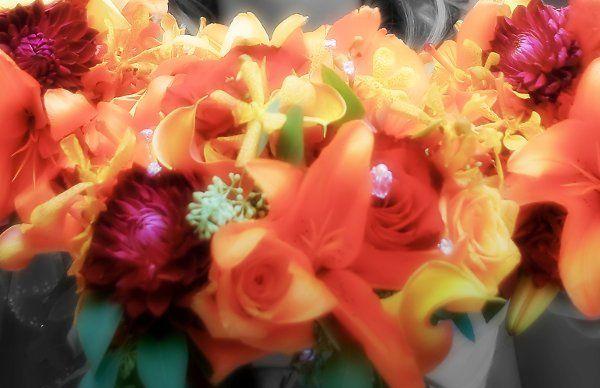 Tmx 1298251290437 Orange1 Tulsa wedding florist
