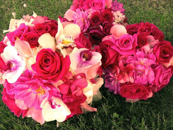 Tmx 1298345049578 Hotpinkandwhitebokays Tulsa wedding florist