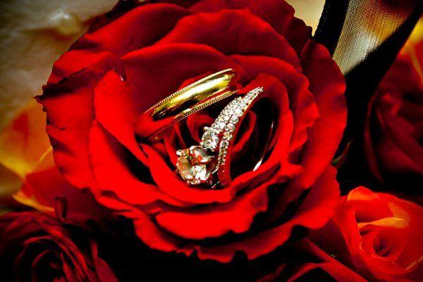 Tmx 1298346309593 JamieSnowwedding035 Tulsa wedding florist