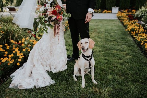 Tmx Jjfredwedding Elvirakalvistephotography 341 51 925122 1572474335 Brooklyn, NY wedding florist