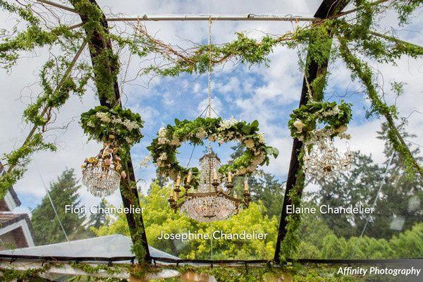 Tmx 1424215255715 Vintage Ambiance Fiorijosephineelaine Chandeliersl Bellevue wedding rental