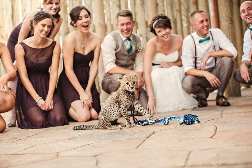 cf164c27b39b3189 1449069025028 sunny 95 wedding