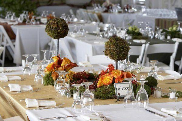 Tmx 1233070262250 Springtable Emerald Isle wedding rental
