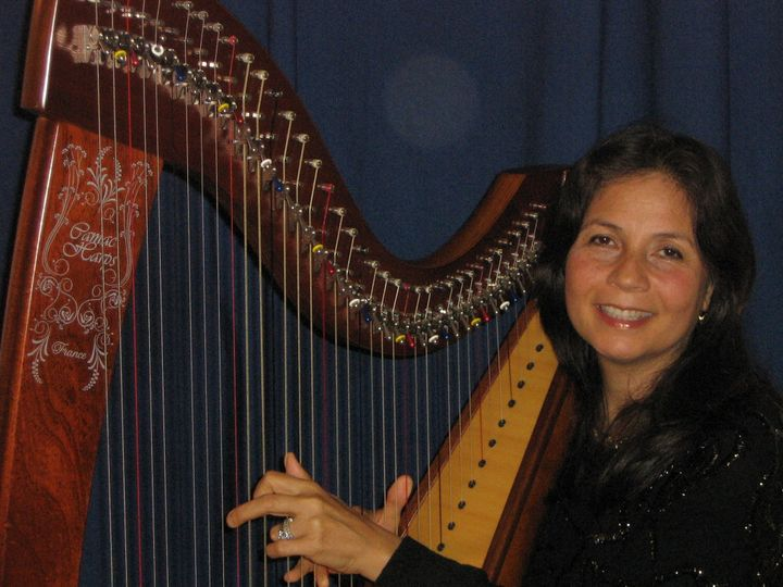 We have an Elegant Classical Harpist  forYour Wedding Ceremony,  Cocktail Hour or Small Reception.