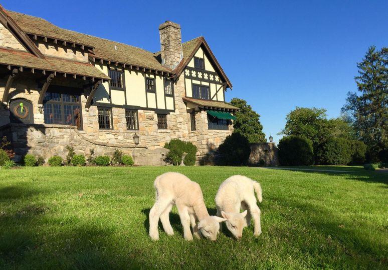 Milky Way Farm Manor House