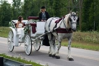 Camelot Carriage Rides