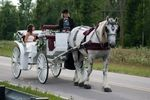 Camelot Carriage Rides image