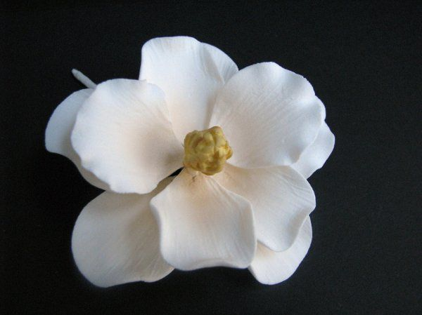 Magnolia Grandiflora (Southern Magnolia) - Ivory - http://www.gumpasteflowerstore.com/magrsmaiv.html