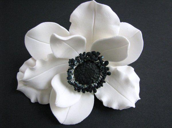 Anemone Wind Flower