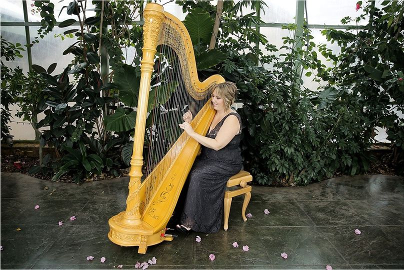 800x800 1455233523065 monica smith harpist0085