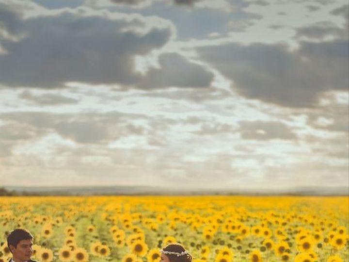 Tmx 1493530803189 Sunflowers Waco, TX wedding officiant